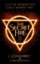 the secret fire cover